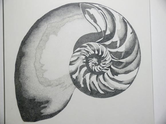 Parvathi Nayar's The Fluidity of Horizons