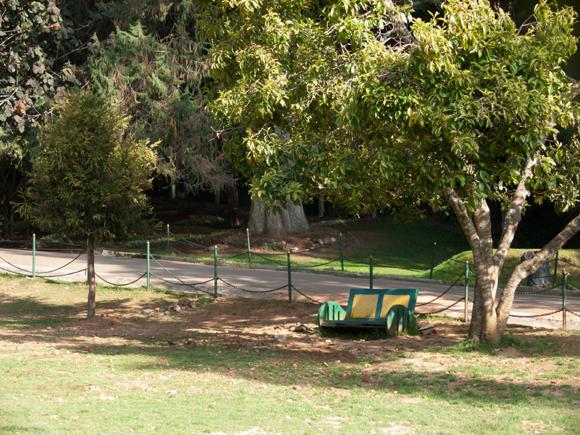 Govt. Botanical Garden