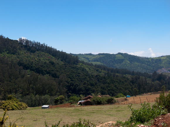 Theetukal, Ooty