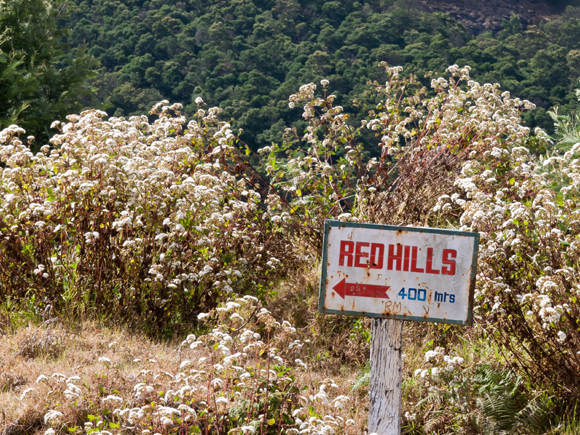 Red Hills board...